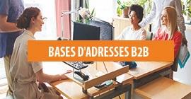 Bases d'adresses B2B